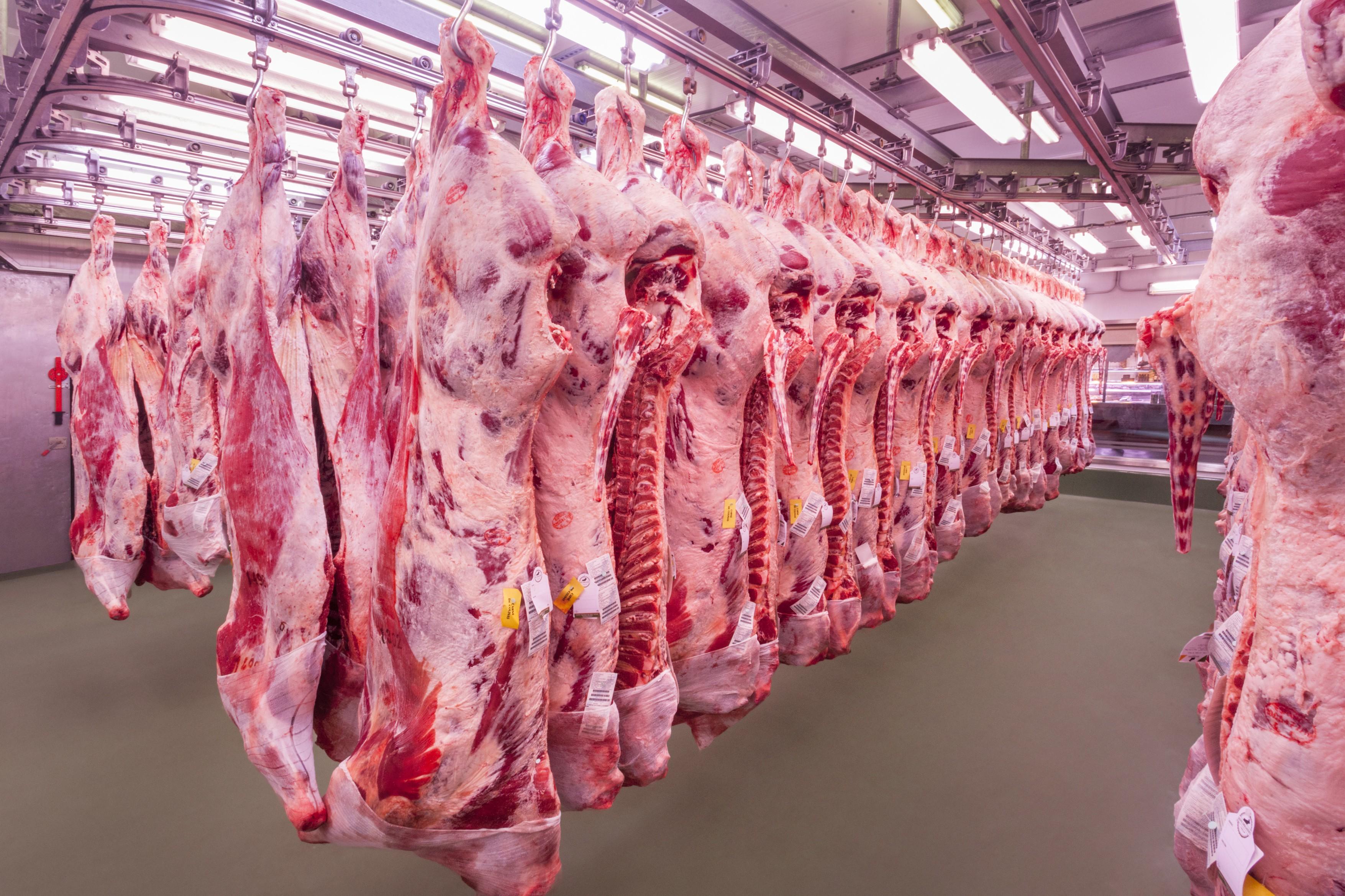 Carnicer as grupo embajadores - Carniceria en madrid ...